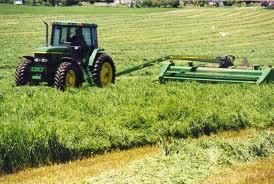 Lavorare in fattoria: in Spagna con il programma WWOOF!