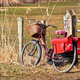 valencia-biciclette