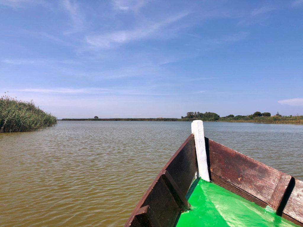 Valencia gite fuori porta: alla scoperta di El Palmar - giro della laguna in barca