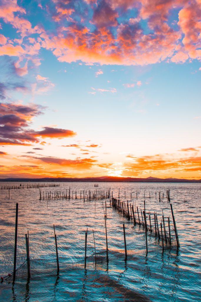 Valencia gite fuori porta: alla scoperta di El Palmar - Albufera al tramonto